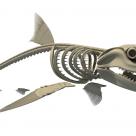 Акулий хрящ и его свойства для суставов