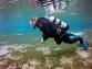 Чудеса на дне океана. Часть 1.