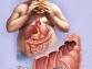Как кишечные паразиты влияют на массу тела?